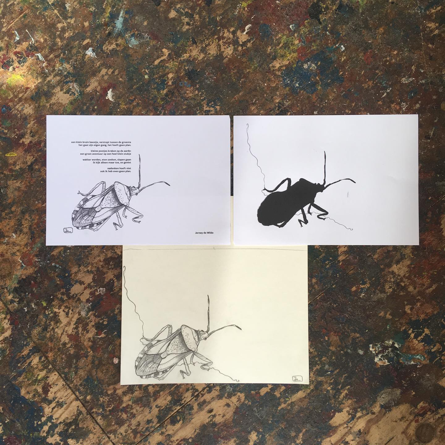 "For @cultuurvlinder 's new project Buitenkamerworkshops, we made a little example booklet to show the workshop participants how Riso printing works. Participants will also be making a poem, so we made some too. These are the drawing and the preparation for riso, which I will show in my next post :).The little bug is called a Stinkbug (I just discovered haha!) In Dutch we call it a ""grauwe schildwants"" because of it's gorgeous shield. I love discovering them @inhettoverbosch 🖤.#schildwants #stinkbug #grauweschildwants #riso #grafischewerkplaatsdenhaag #printmaking #grafiek #bookmaking"