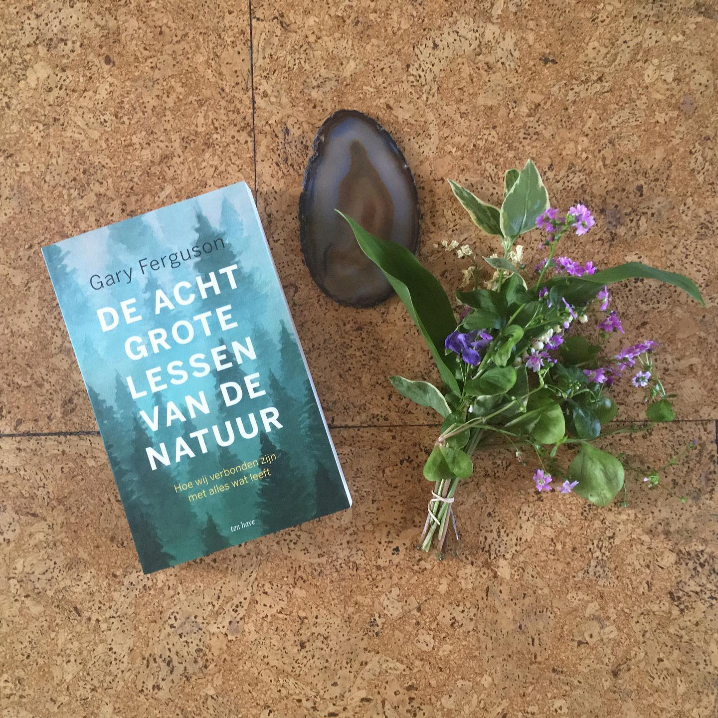 Yay! My book came in: The Eight Master Lessons of Nature; What Nature Teaches Us About Living Well by Gary Ferguson, can't wait to start! And always nice to visit Yvon and Stefan at @kbw.alice.in.wonderland my favorite bookstore in town!.#buylocal #supportyourlocals #kinderboekwinkelaliceinwonderland #thehague #denhaag #garyferguson #deachtgrotelessenvandenatuur